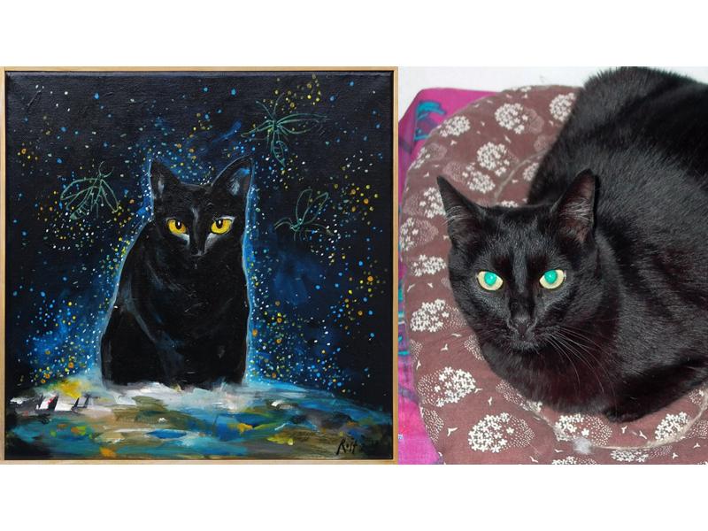 černá kočička na koni černý péro černá shemale pornohvězda