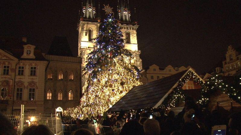 Vánoční strom pro Staroměstské náměstí bude ze Semil