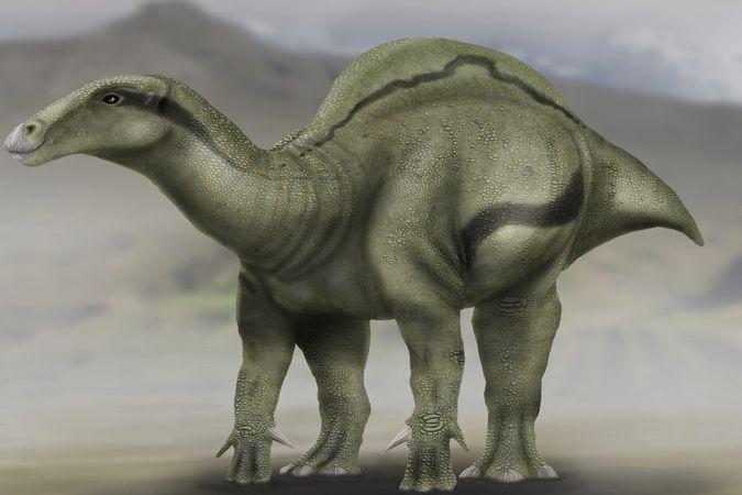 Nový druh dinosaura Morelladon beltrani