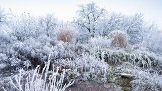 Teploty půjdou ještě níž a nasněží