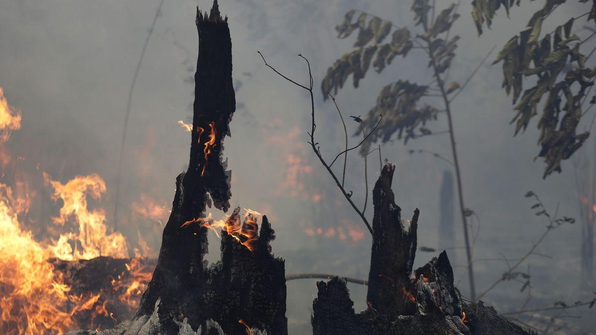 V brazilské Amazonii zaznamenali v srpnu přes 30 tisíc požárů