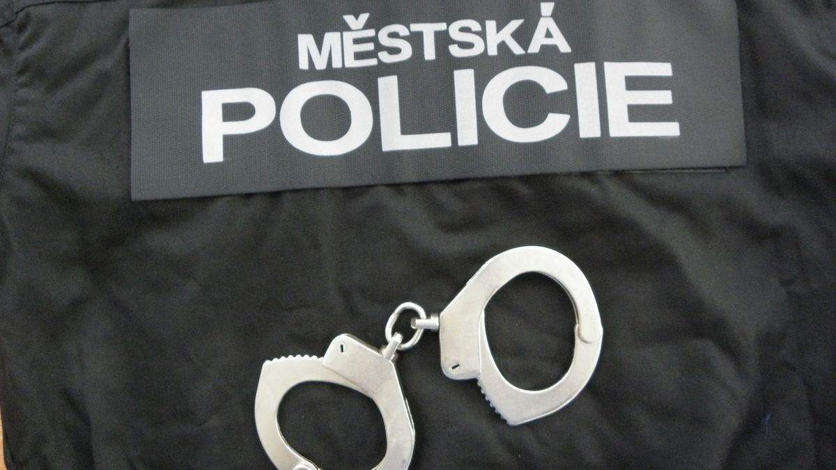 Slovák onanoval v centru Brna, na strážníky mluvil třemi jazyky
