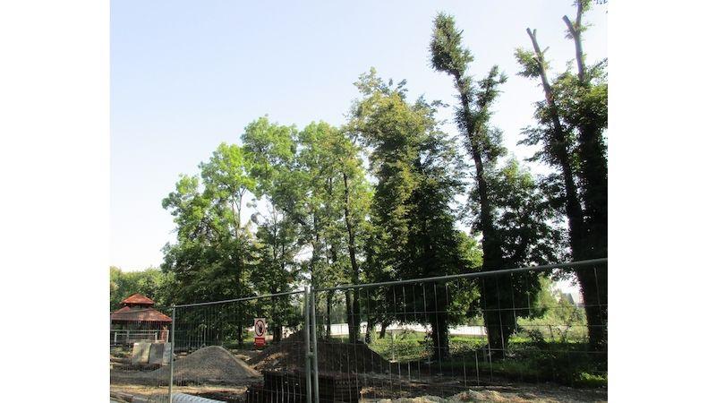 Ve Frýdku-Místku budou vykáceny poškozené stromy kolem řeky