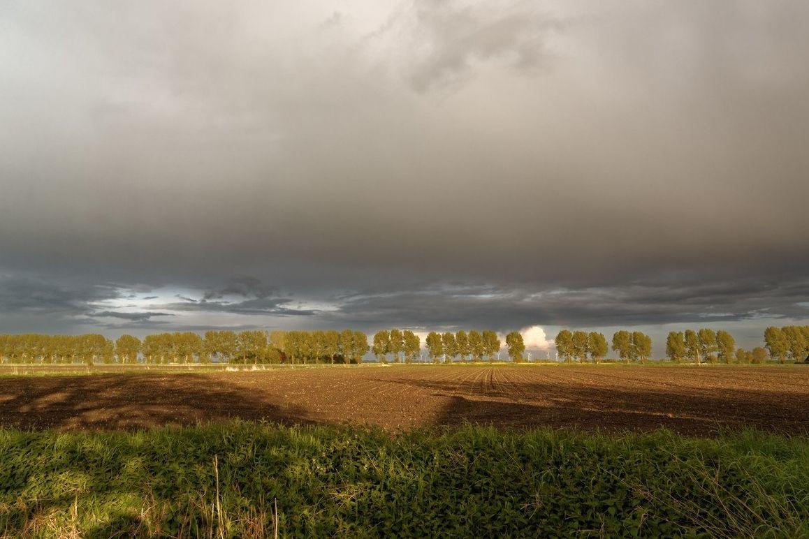 Obloha se během pátku zatáhne