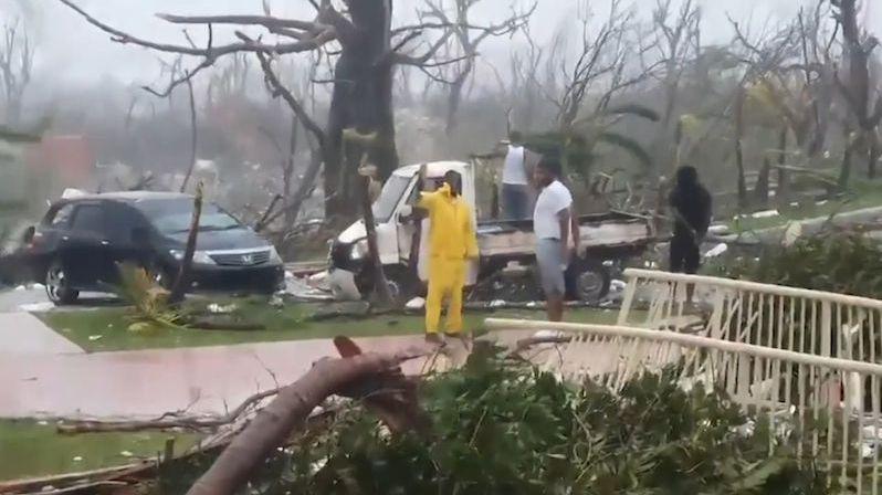 Žena ukryla před hurikánem Dorian 79 psů ve své ložnici