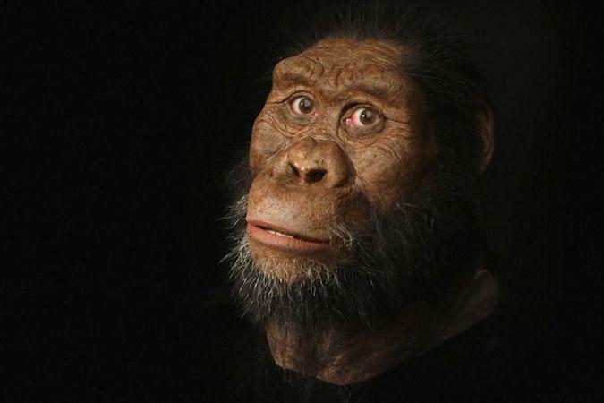 BEZ KOMENTÁŘE: Vědci objevili téměř celou 3,8 milionu let starou lebku. Podle ní zrekonstruovali obličej předchůdce člověka