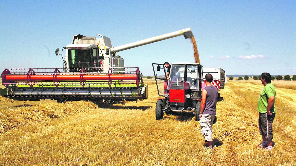 Pesticidů na českých polích ubývá