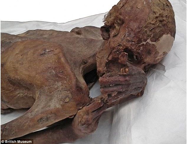 nám datování cukrové mumie zdarma online datování v liverpoolu