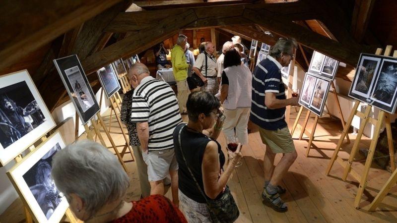 Malý koncert zahájil vKaplance vernisáž výstavy spřekvapivou návštěvností