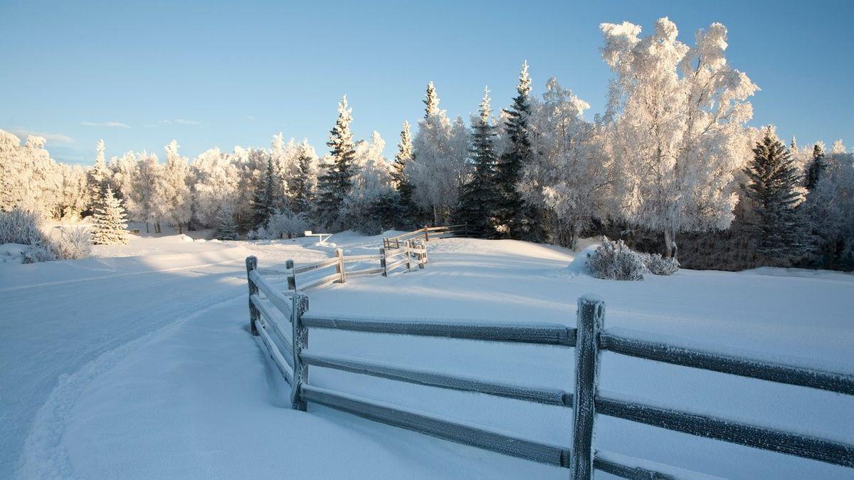 Pětiletá dívka na Aljašce ušla téměř kilometr v 35stupňovém mraze s bráškou v náručí