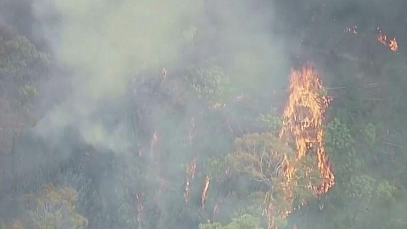 Omlouvám se za svou dovolenou, vzkázal australský premiér z Havaje. Kvůli požárům umírali hasiči