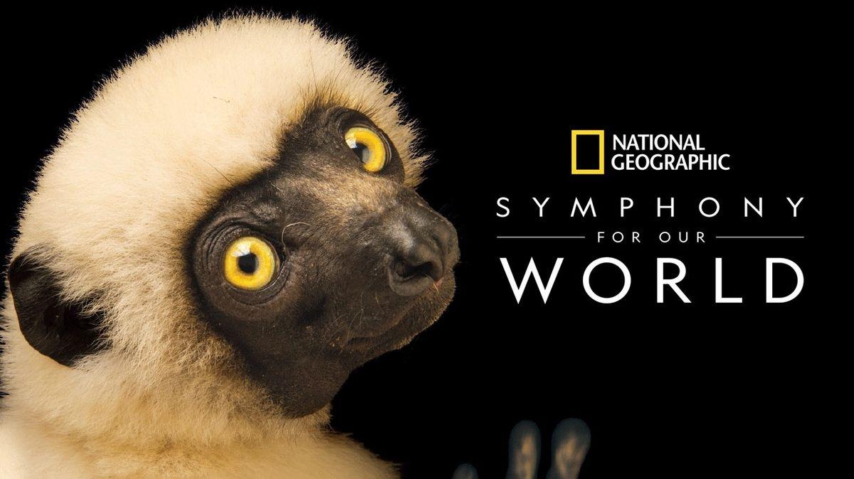 National Geographic: Symfonie našeho svět