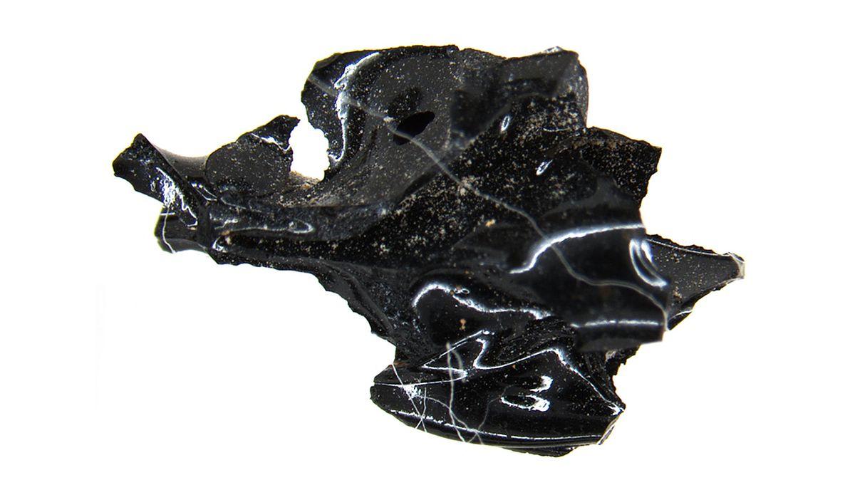 Erupce Vesuvu proměnila mužův mozek ve sklo