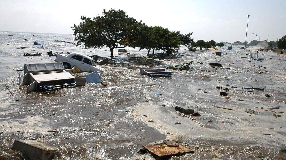 Patnáct let po tsunami příběhy znovu ožívají