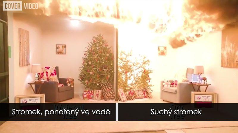 Jak se vyhnout vánočnímu neštěstí