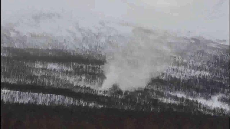 """Vzácný """"sněžný ďábel"""" se objevil na severu Norska"""