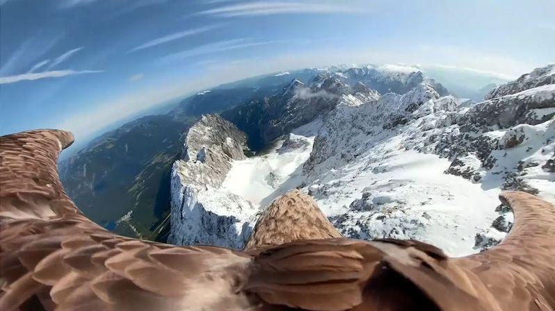 Svět očima orla. Dravec natočil tající alpské ledovce