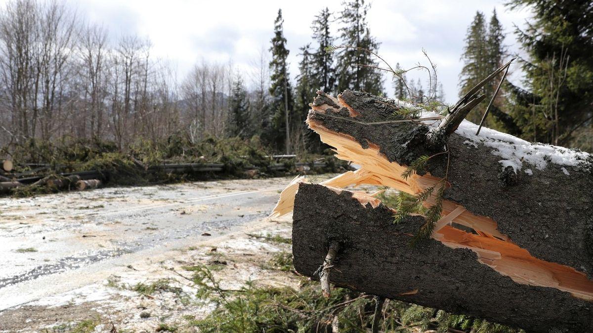 Kvůli silnému větru byli lidé na severu Slovenska na Štědrý den bez elektřiny