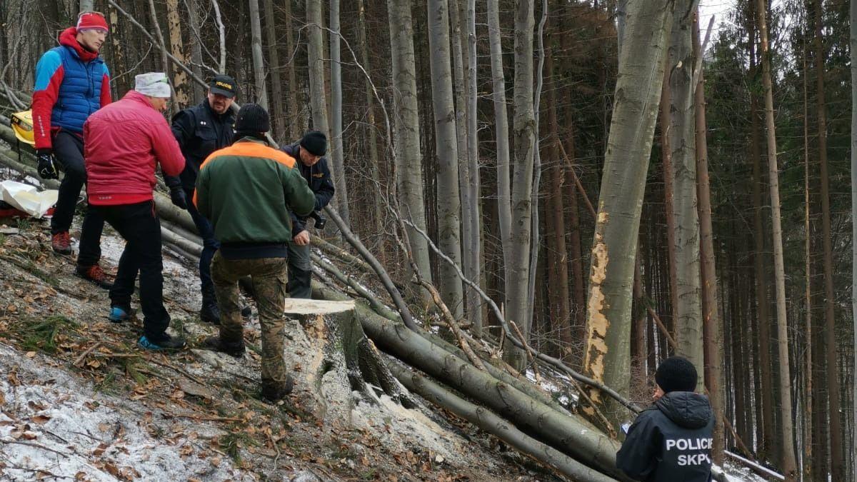 Lesního dělníka v Beskydech zabil strom