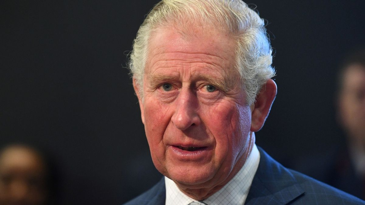 Charles: Filantrop a fanoušek architektury z královské rodiny