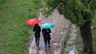 V Česku je počasí na houby