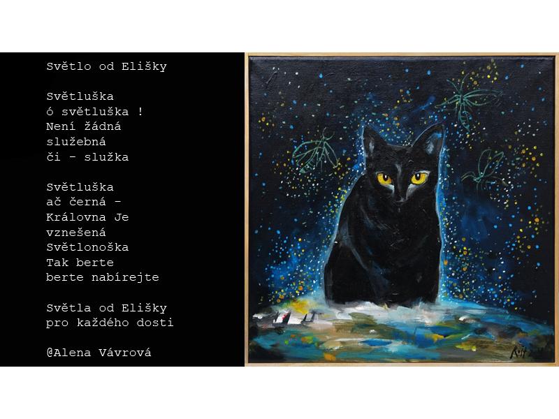 Černý péro uvnitř černá kočička