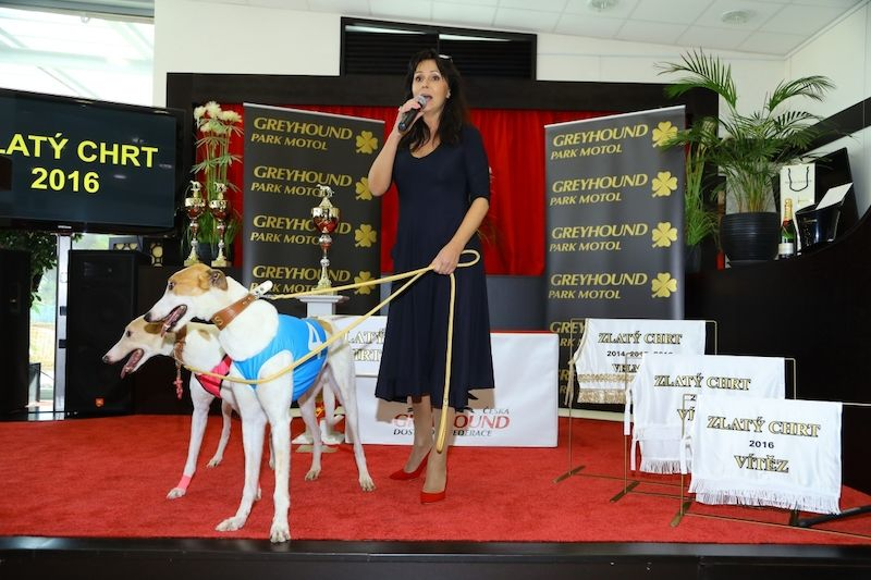GOLDEN GREYHOUND AWARDS 2017