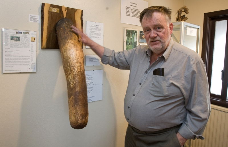 největší obrázek penisu