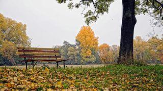 Po chladnějším začátku října se oteplí, bude i 20 stupňů