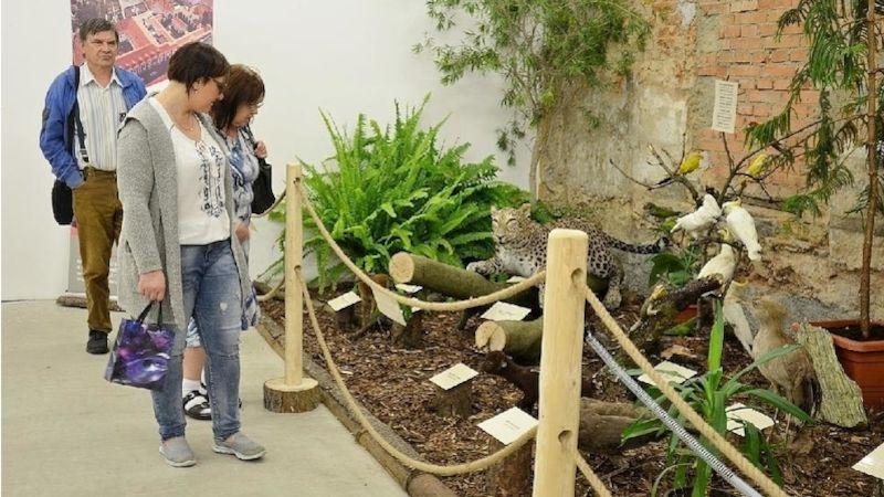 Děčínská zoo oslavuje 70. výročí založení výstavou