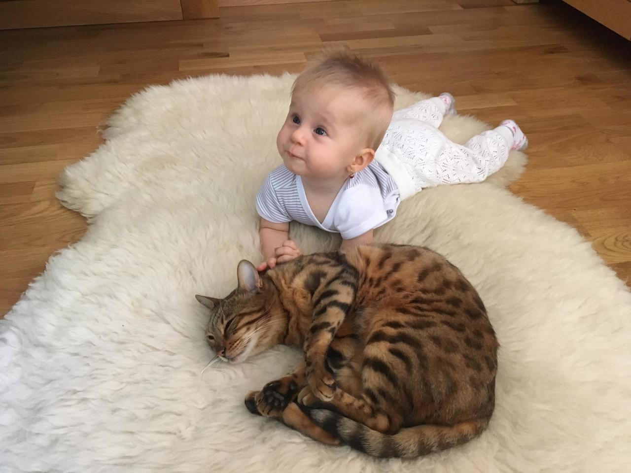 feny s velkou kočkou