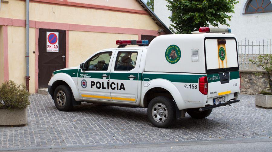Sedmiletý slovenský chlapec zemřel na dětském táboře