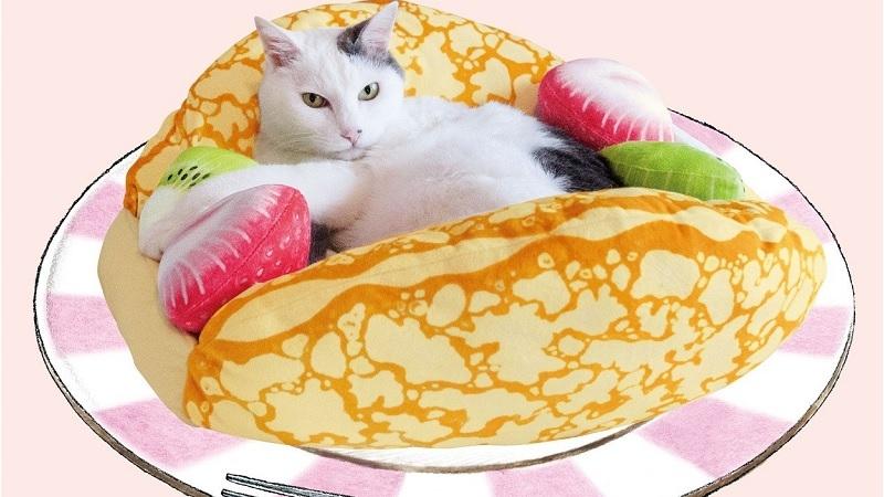 Brunetka s těsnou kočkou