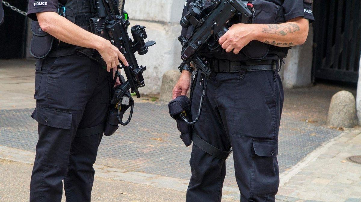 V Hamburku napadlo 80 puberťáků policistu