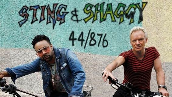 Sting a Shaggy