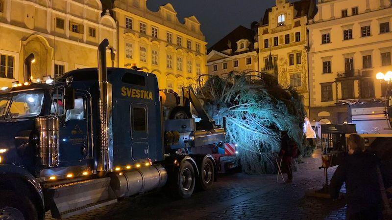 Na Staroměstském náměstí už stojí vánoční strom, 22metrový smrk ztepilý