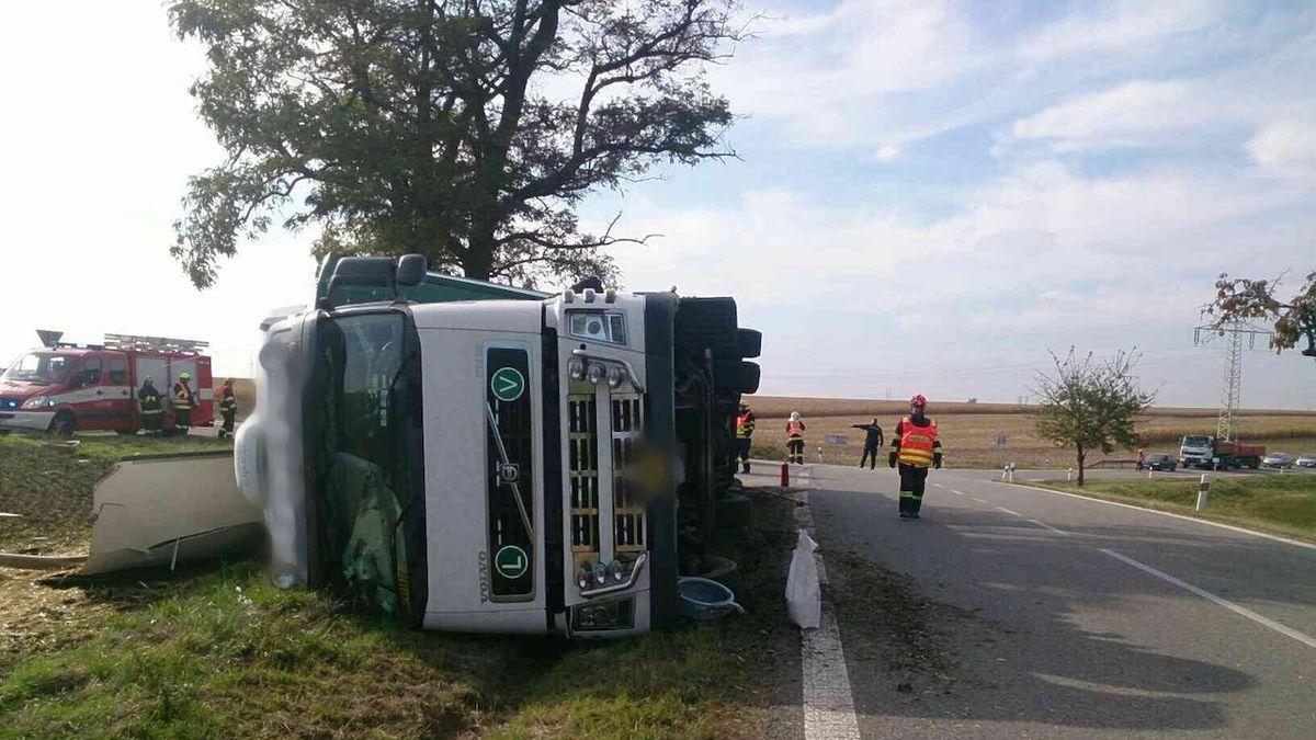 Na Znojemsku se převrátilo nákladní auto s býky. Část jich uhynula, dva utekli