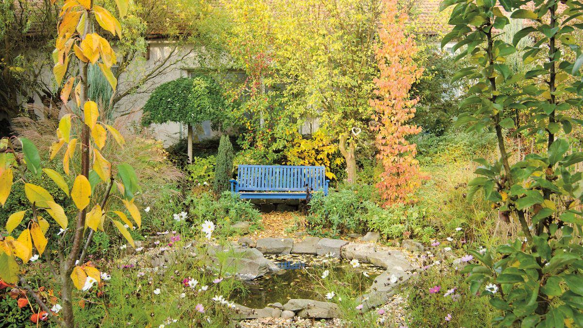 Podzimní zahrada je plná kontrastů, užijte si je plnými doušky