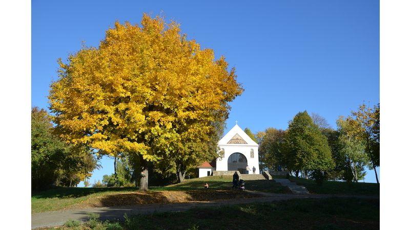 Zasaďte na podzim svůj strom, třeba ve skanzenu vUherském Hradišti