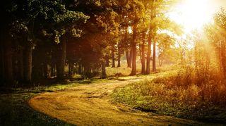 Víkend slibuje slunečné počasí s vysokými teplotami