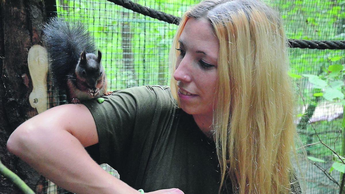 Veverčat se ujala děčínská zoo