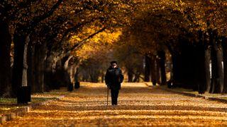 Deštivé dny ještě chvíli vydrží, listopad bude spíš teplý