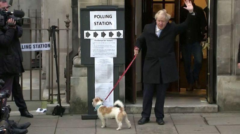 Johnson zpřísní zákonem postihy za ubližování psům