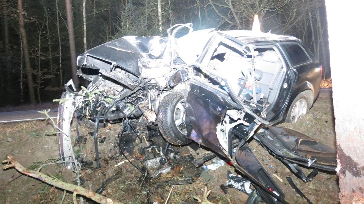 Devatenáctiletý řidič nezvládl řízení a zdemoloval auto o strom. Na místě zemřel
