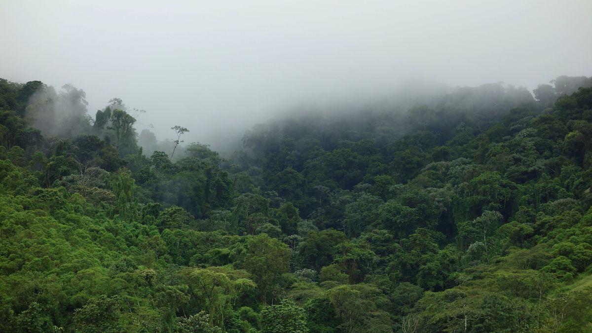 Kostarika je šampionem v boji proti klimatickým změnám