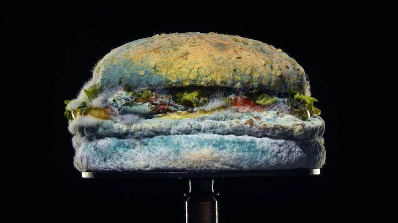 Burger King šel s novou reklamou do rizika. A zadařilo se