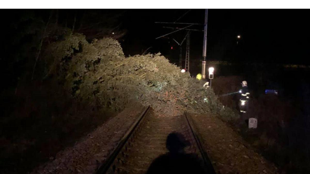 Účet za Julii: Na 40 tisíc domácností bez proudu, zastavené vlaky, popadané stromy