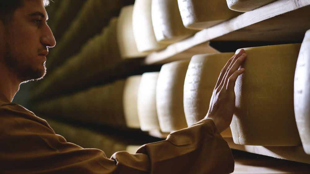 Italská firma ručí za třičtvrtěmiliardový úvěr bochníky sýra