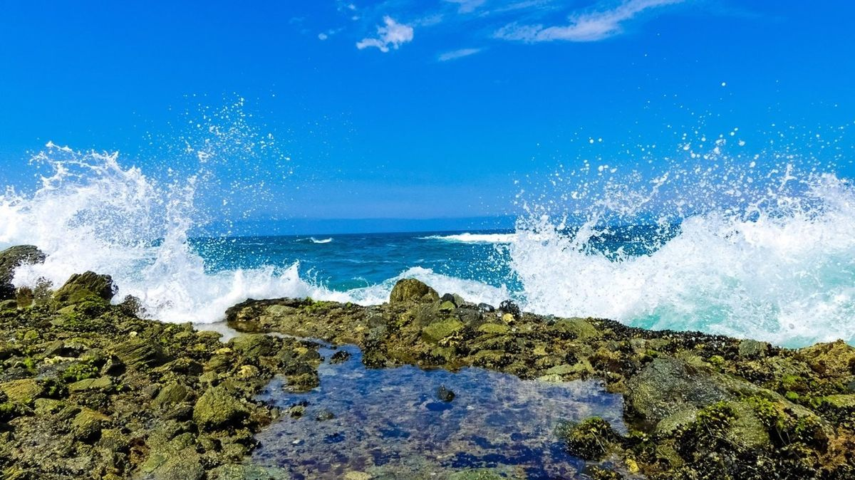 Vlna smetla novomanžele do moře