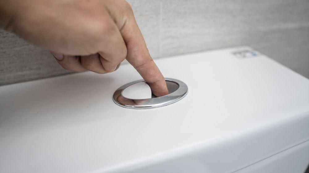 Za špatně splachující toaletu mohli čtyři hadi